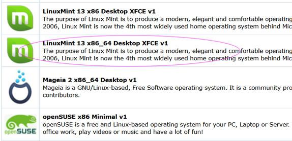 RAKsmart VPS主机安装 Linux mint系统XFCE桌面支持中文语言